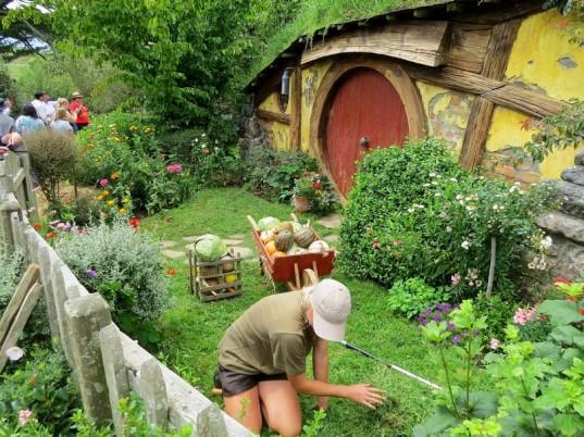 gardening - Copy