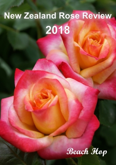 2018 rose review