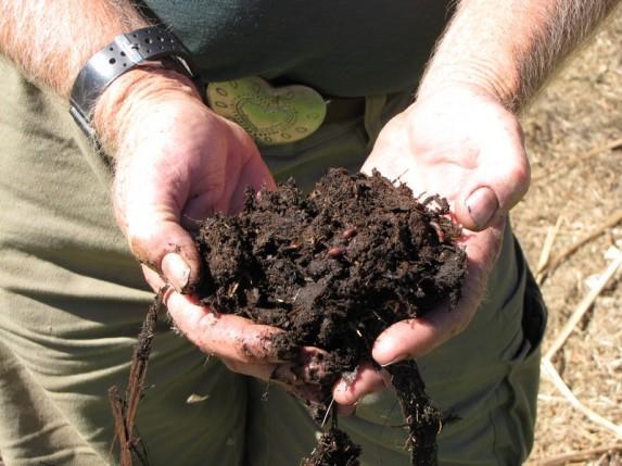 hub-compost