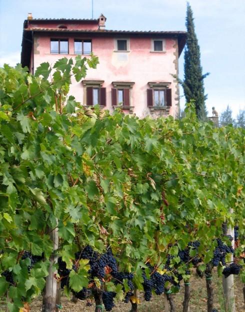 tuscany - Villa Vignamaggio