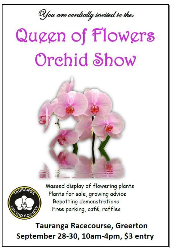 2018 orchid flyer