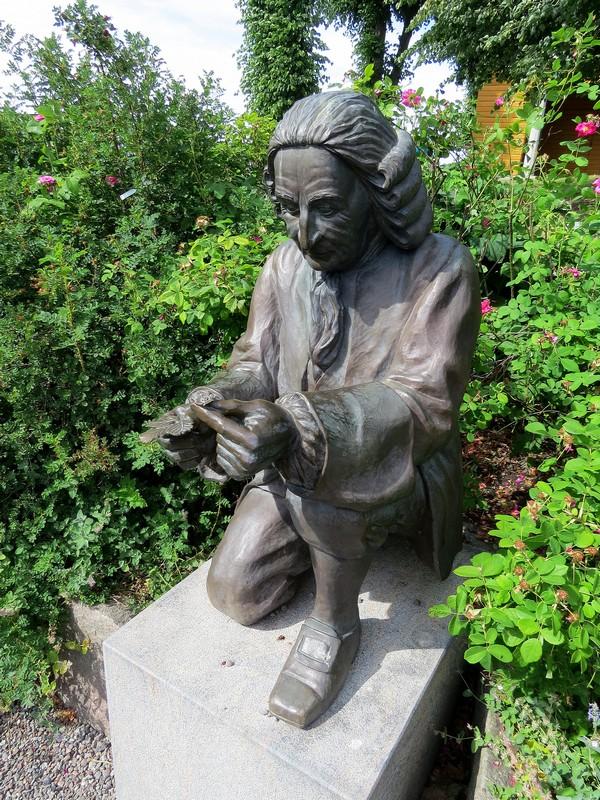 Linné statue